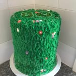 "8"" Grass Themed Cake"